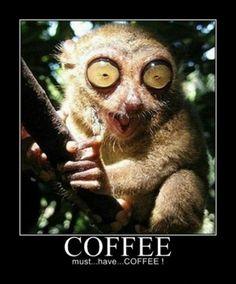 More coffee. Ya ya ya ;D LO