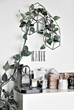 Marvelous Indoor Vines and Climbing Plants Decorations 47 Tea Station, Coffee Bar Station, Home Coffee Stations, Coffee Bar Home, My Coffee, Coffee Bars, Coffee Corner Kitchen, Decoration Plante, Plant Decor