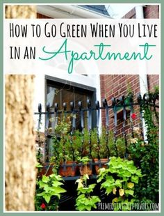 Eco-Friendly Apartment Living Tips - How To Go Green When You Live in an Apartment. Simple ways that you can enjoy an eco-friendly lifestyle in an apartment.