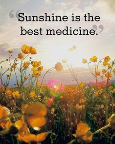 """Spring Quotes to Welcome the Season of Renewal """"Sunshine is the best medicine.""""""""Sunshine is the best medicine. Motivation Positive, Positive Quotes, Positive Attitude, Attitude Quotes, Positive Thoughts, Bohemian Quotes, Spring Quotes, Spring Sayings, Quotes About Spring"""