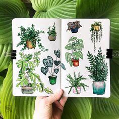 As a plant mom myself drawing plants is pure joy :)) #sketching #sketchbook #artjournal #artjournalling #artjournalinspo #sketchbooktour #artist #sketching #drawing #doodle #plantdoodles #plants #plantillustrations #artsy #art Sketchbook Tour, Moleskine Sketchbook, Sketchbook Inspiration, Sketchbooks, Plant Drawing, Painting & Drawing, Art Journal Pages, Art Journals, Plant Sketches