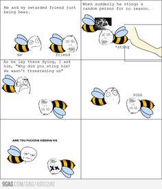 Bees YOLO...