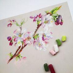 German artist Lenokdih chalk drawing - Page 11 of 27 - Drawings - Chalk Art Soft Pastel Art, Chalk Pastel Art, Pastel Artwork, Pastel Flowers, Pastel Floral, Pastel Drawing, Chalk Pastels, Chalk Art, Soft Pastels