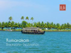 Kumarakom is a must see backwater hub in Kerala. One can find mangrove forests, coconut palms and serene blue waters besides the backwater. International Holidays, Mangrove Forest, Kerala Tourism, Best Travel Deals, Top Place, Hill Station, Incredible India, Holiday Travel, Family Travel