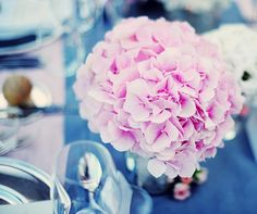 Pink and Gray Wedding, Feminine, Glamorous, Elegant, Outdoor Wedding, Destination Wedding, Real Wedding || Colin Cowie Weddings