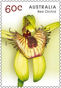 Bee Orchid ,stamp from Australia 2014
