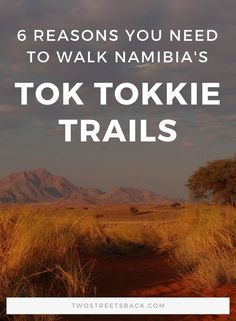 Tok Tokkie Trails is *the* reason we decided to go to Namibia. This three day walking safari through the NamibRand desert is an unforgettable experience - a spectacular inclusion to any Namibia itinerary. Africa Destinations, Amazing Destinations, African Vacation, African Holidays, Travel Route, Travel Tips, Namibia, Hacks, Africa Travel