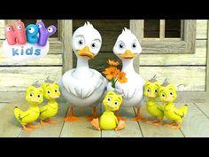 Cinco Patitos - Canciones Infantiles - 5 Patitos - YouTube