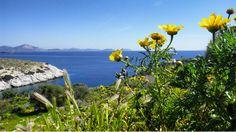 Giorno#8 - Il panorama della baia di #Atene