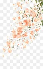 Image result for water color flowers png