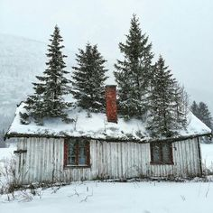 Repost from using - This is the first time weve ever seen anything like this before! We think this little cottage has some serious curb appeal. Old Buildings, Abandoned Buildings, Abandoned Places, Interesting Buildings, All Nature, Winter Pictures, Old Barns, Abandoned Mansions, Cabins In The Woods