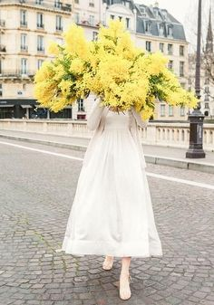 Late For Love - a huge bouquet of Wattle pr mimosa. Photographed on Ile St Louis Paris for the series Young Girl in Bloom limited edition prints My Flower, Fresh Flowers, Beautiful Flowers, Yellow Flowers, Flowers For Love, Yellow Wildflowers, Gift Flowers, Flowers Gif, Spring Flowers