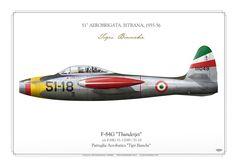 "ITALIAN AIR FORCE51A Aerobrigata. Istrana AB. 1955-1956Pattuglia Acrobatica ""Tigi Bianche"""