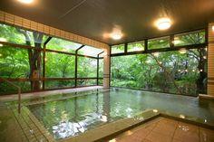 indoor & outdoor pool