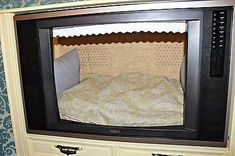 Dog Bed Tv