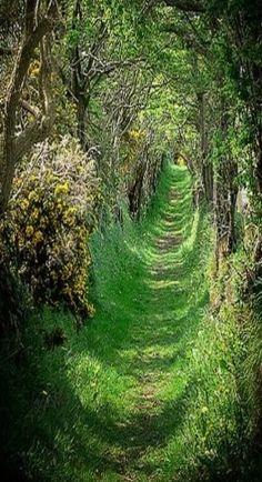 50 Best Fairy Tale Villages in Ireland