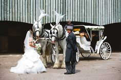 Bride and shire horses from The Ostler Horse & Carriage Company