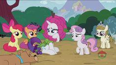 #1429975 - apple bloom, cutie mark crusaders, flower costume, flowerity, forever filly, rarity, ripley, safe, scootaloo, screencap, spoiler:s07e06, sweetie belle, zippoorwhill - Derpibooru - My Little Pony: Friendship is Magic Imageboard