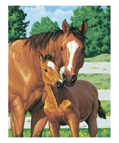 Love this Mothers Pride Paint by Numbers Set on #zulily! #zulilyfinds