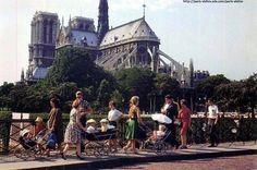 Bébés de sortie par ce temps...en 1966,pont de l'Archevêché ! Un peu de de douceur de nuit pas (c)W.Ronis #Paris