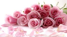 Scattered roses wallpaper, Rose Flower images, Rose Pictures and Backgrounds Happy Mothers Day Images, Happy Mother Day Quotes, Happy Images, Flower Images, Flower Pictures, Beautiful Pink Roses, Pretty Roses, Beautiful Bouquets, Romantic Roses
