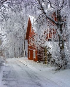 🇳🇴 Hoar frost on the road to the lake (Hadeland, Norway) by Harald Gjerholm Winter Szenen, Winter Magic, Winter Time, Winter Christmas, Norway Winter, Reindeer Christmas, Merry Christmas, Lillehammer, Alesund