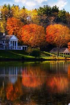 Gorgeous lake cottage setting and Autumn color ~ Wandering the Good