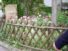 My favorite fence in Giverny, France .