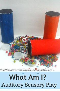 What am I Auditory Sensory Play: Preschool Sensory Activities