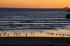 Playa de Ensenada, Baja California, al atardecer.