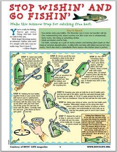 Homesteadsurvival S Image Minnow Trap Fishing Bait Fishing Tips