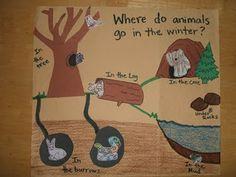 Animals in Winter- Hybernation/ Penguins/ Polar Bears. Make for morning meeting Kindergarten Science, Preschool Classroom, Preschool Crafts, Preschool Winter, Winter Kids, Winter Activities, Science Activities, Animal Activities, Science Resources
