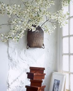 On a Limb-Dogwood branches clipped from Tomkins's garden are arranged in an antique Japanese wicker backpack