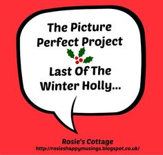 Rosie's Cottage: The Picture Perfect Project - Last Of The Scottish Winter Holly <3