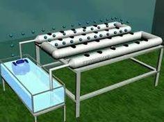نتيجة بحث الصور عن hydroponic gardening systems
