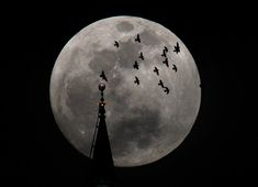The full Super Moon rises behind a mosque in Amman on May 5, 2012