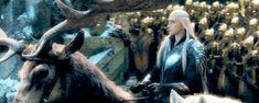 * ~ * Der Herr der Hirsche und seine Damen * ~ * # 7 - Herr der Ringe Film Forum