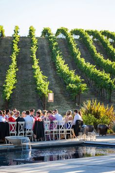 Shannon & Mike | Modern Wine Country Wedding in Sonoma captured by Kate Webber - via Snippet & Ink (Venue: The Standard, Glass House Vineyard in Sonoma, California)