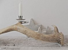Antler and Christmas tree candle clip. Great way to use Christmas tree candle holders in a different setting! www.christmasgiftsfromgermany.com