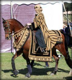 Scottsdale Polo Party, Arabian horse, 1