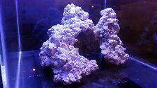 Aquarium Reef Tank Aquascape Rock Sculpture for Saltwater Live Corals & Marine