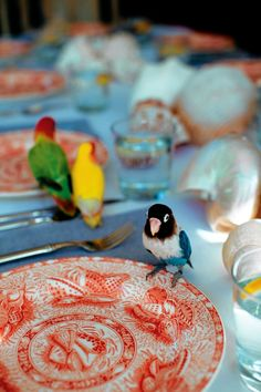 Seashell Dishes: Set a Summery Table Without Paper Plates