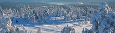 Skiferie i Sverige: Alt om skiområder, skisportssteder, tilbud på skiferie, lifter, pistekort & masser af sjove aktiviteter på din næste skiferie til Sverige.  http://danmark.visitsweden.com/aktiviteter/outdoor/skiferie-i-sverige/skiomrader/