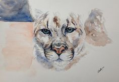 Cougar - Out of Darkness: Diane Beatty Watercolor Print, Watercolor Tattoo, Weight Loss Rewards, Pastel Colors, Colours, Mountain Lion, Landscape Drawings, Darkness, My Arts