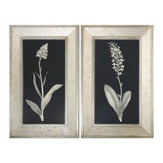2 Piece Antique Floral Study Framed Graphic Art Set
