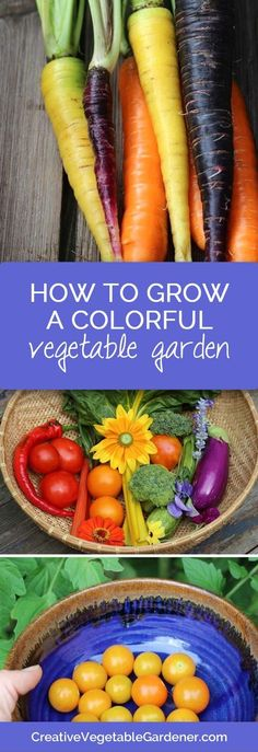 Your garden can produce a lot of food & be a beautiful part of your landscape. Here's how!