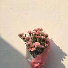 pink flowers #summer