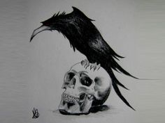 Raven, Crow, et Corbacs  Fe4c67ee6e1f948937bfb2268ca5b34f--raven