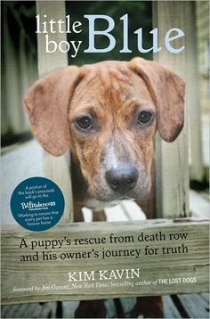 Little Boy Blue: A Puppy's Rescue from Death Row and His Owner's Journey for Truth by Kim Kavin (Pub 9/1/2012) Click on cover to place a hold at Otis.
