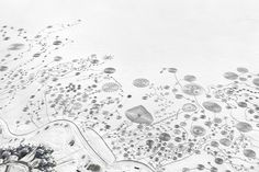 Snow Drawings-Catamount04